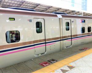 E7系とき号新潟行(特別カラー)
